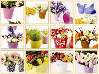 کاور گلدان