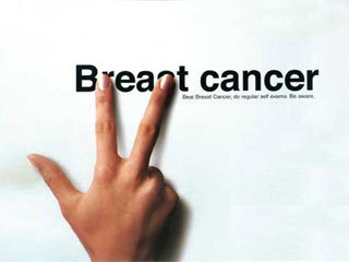 http://www.ninipage.com/static/article/breast_cancer.jpg