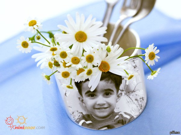 گل گلدون من