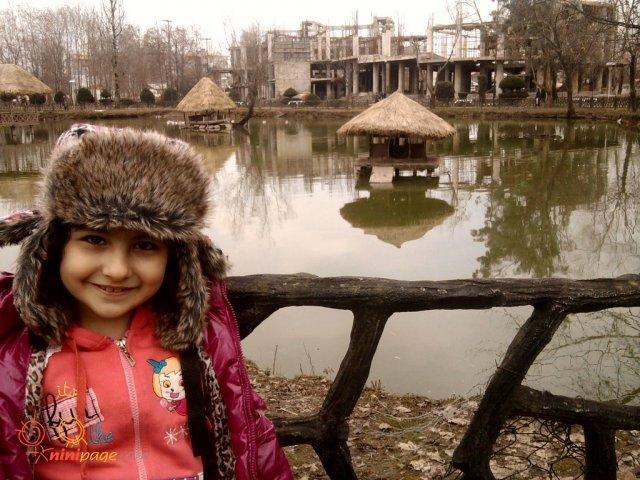عسل در بوستان ملت (رشت)
