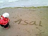 عسل در دهکده ساحلی