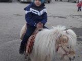 اینهم اسب سواری آقابردیا