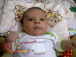 امیرحسام