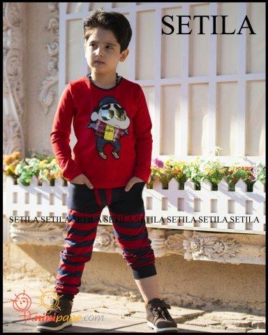 Mohammadariya modeling