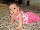 رها 8 ماهگی