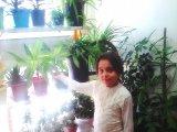 گلخانه خاله زهرا