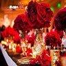 برگزاری جشن تولد و تشریفات مراسم تولدگل سرخ
